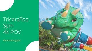 TriceraTop Spin 4K POV | Animal Kingdom, Walt Disney World, Florida | May 11, 2018