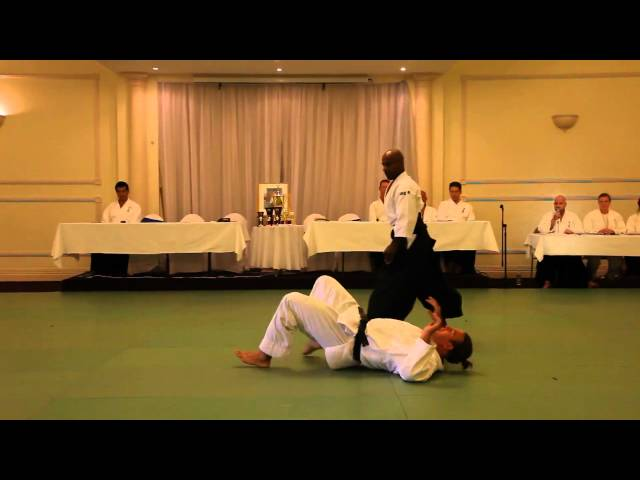 Excellent Aikido Demonstration