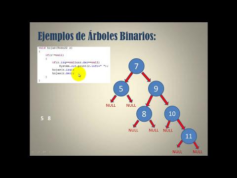 Pruebas de Escritorio sobre Recursividad y Arboles Binarios