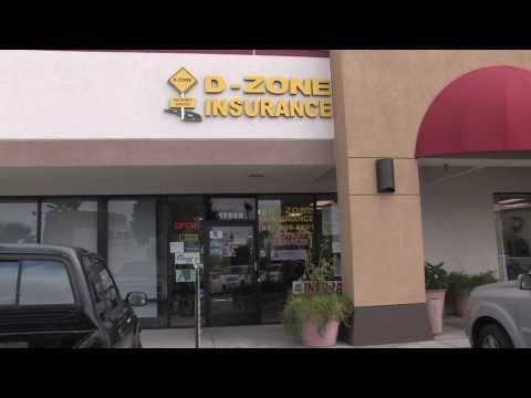 Alan Mendelson & D-Zone Insurance