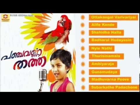 Panchavarnna Thatha | Mappilapattukal | Malayalam video