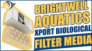 Improve water quality naturally with Brightwell Aquatics Xport Biological Filter Media