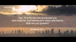 Ibn Al-Haytham (Alhazen) | Father of Optics | Contribution of Muslim Scientists to the Modern World