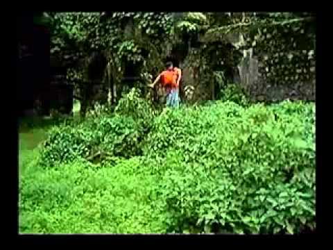 1969 Mahua   Maine Tere Liye Re Jag Choda Tu Mujhko Chod Chali...