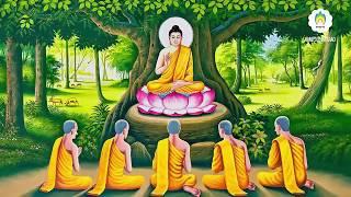Kể Chuyện Đêm Khuya - Chuyện Nhân Quả Phật Giáo Hay Nhất - Đại Bi Chú Giảng Giải P2