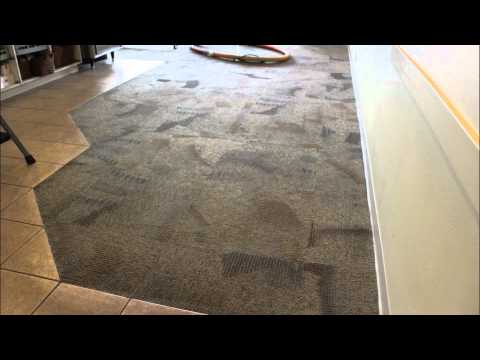 Carpet Cleaning Magic! video