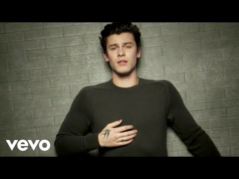 Shawn Mendes - In My Blood   Shawn