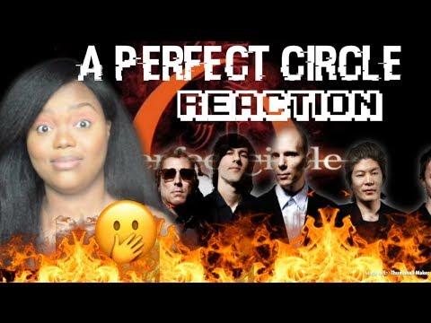 A Perfect Circle- Judith REACTION!!!