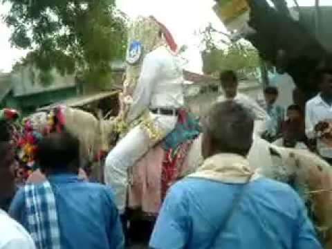 Indian Muslim Marriage With Horse Riding-3 video