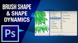 Photoshop Tutorial | Learn About Brush Shape and Color Shape Dynamics In Photoshop | Digital Teacher