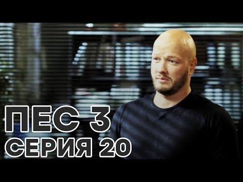 Сериал ПЕС - все серии - 3 сезон - 20 серия - смотреть онлайн