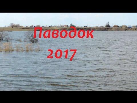 запрет на ловлю рыбы 2017 казахстан