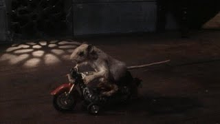 The Mouse and the Motorcycle (Trailer)