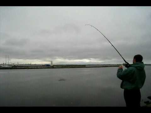 рыбалка в жлобине прогноз клева