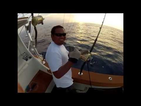 Bwana sportfishing March 2012 Mixed Bag