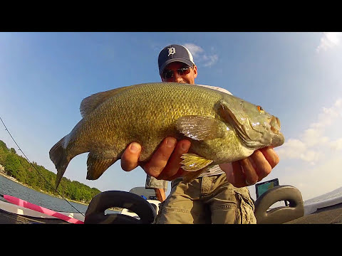 Sight Fishing Smallmouth Bass