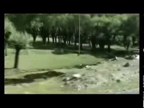 ВЛАДИМИР ПУХОВ - ЗЕЛЕНКА
