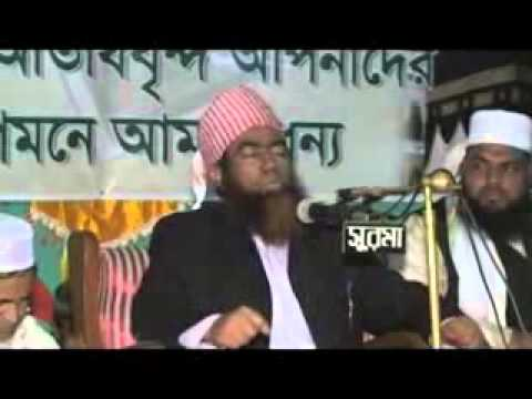Maulana Jubaer Ahmed Ansari Bangla Waz 2014 video