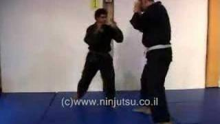 heel kick to knee omote ura