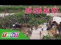 Dỡ chà ăn Tết | Đặc sản miền sông nước | THDT thumbnail