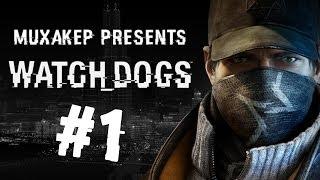 Прохождения игры вотч догс видео