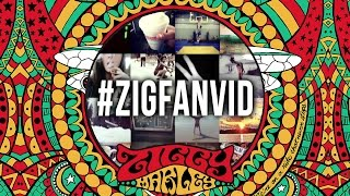"""I Get Up"" – Ziggy Marley (fan Instagram lyric video) 