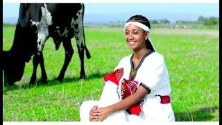 Habtamu Bere - Muluye (Ethiopian Music)