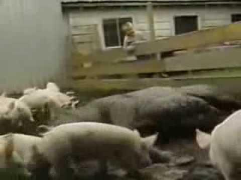 Sesame Street - Being A Pig
