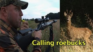 Kristoffer Clausen Calling in and shooting roebuck