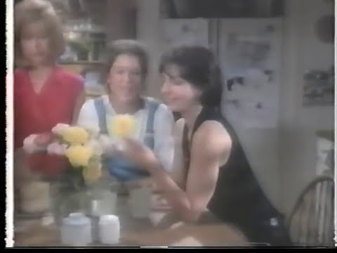 Sisters Television Show 1991