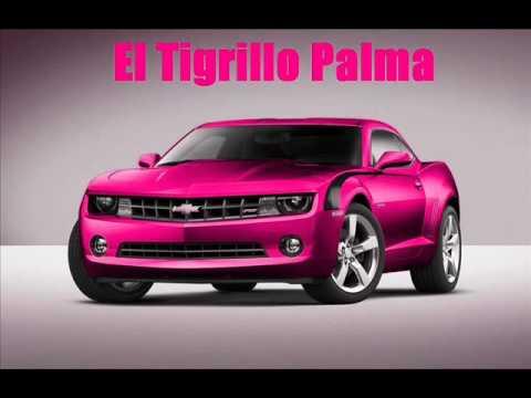 LETRA 15 AÑOS DE PRISIÓN - El Tigrillo Palma | Musica.com