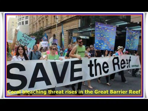 Great Barrier Reef Under Threat : World's largest coral reef system