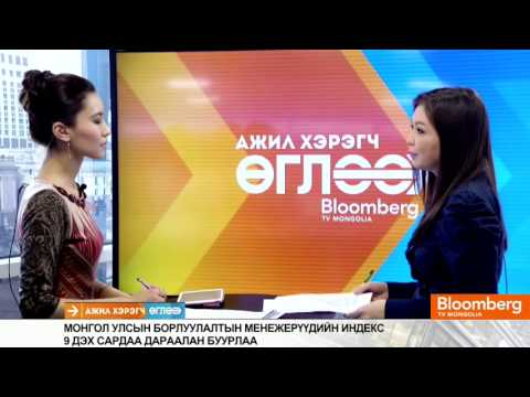 BloombergTV Reporting on the World Economics SMI: Mongolia - February 2014