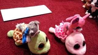 The Great Beanie Boo Tortoise Race Sandy vs Myrtle