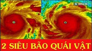 NÓNG: Thái Bình Dương xuất hiện 2 SIÊU BÃO QUÁI VẬT mạnh nhất trên Trái Đất - News Tube