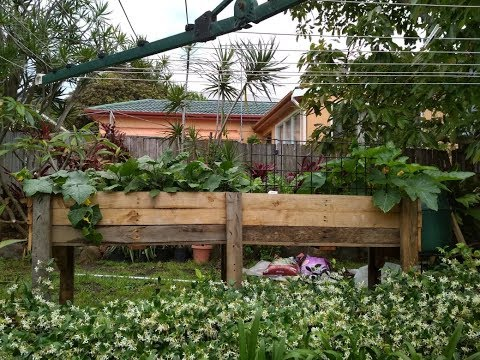 Elevated Raised Garden Bed from Used Pallets