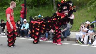 Hung Gar Kung Fu and Lion Dance Academy: Wellesley Parade 2016 Part 1