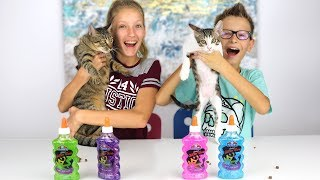 Our Cats Pick Our Slime Ingredients Challenge!!!