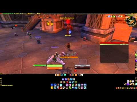 5.2 PvE BM Hunter Opener/Rotation Guide