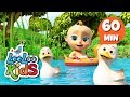 Five Little Ducks Learn English With Songs For Children LooLoo Kids mp3