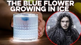 Blue Flower Growing in the Wall - A Toast to Jon Snow | How to Drink
