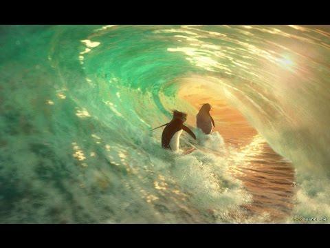 download surfs up legends video mp3 mp4 3gp webm