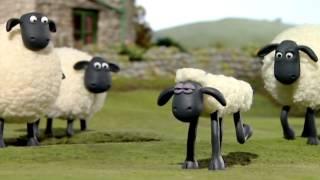 SHAUN THE SHEEP - Cùng cừu Shaun đá bóng