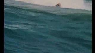 Watch Pearl Jam Big Wave video