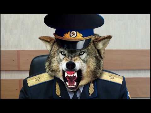 Александр Шестун разоблачает ФСБ России. Владивостокский след
