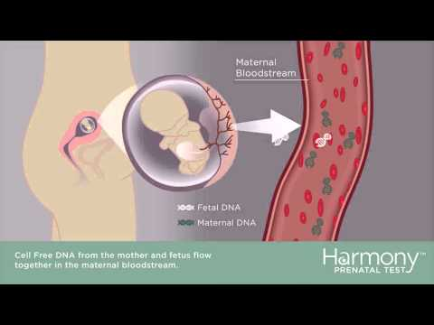 the applications of nanotechnology in fetal imaging and prenatal testing