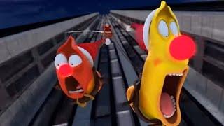 LARVA - CHRISTMAS SPECIAL 🎄 Cartoon Movie | Cartoons For Children | Larva Cartoon | LARVA Official