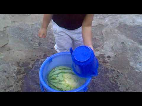Gesar Melone Xxxfilm video