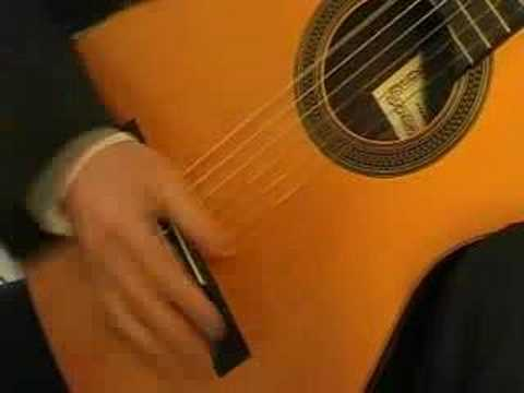 Francisco Tarrega: Jota, played by Michael Erni - guitar
