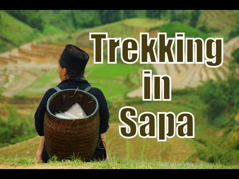 Hike to explore Giang Ta Chai Village (Dzao Tribe) | Trekking in Sapa, Vietnam Travel Video (Part 3)